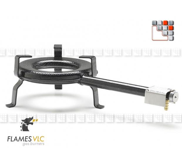 Bruleur Gaz G-250 BFR VLC F08-BDG250B FLAMES VLC® Bruleur Gaz Flames VLC