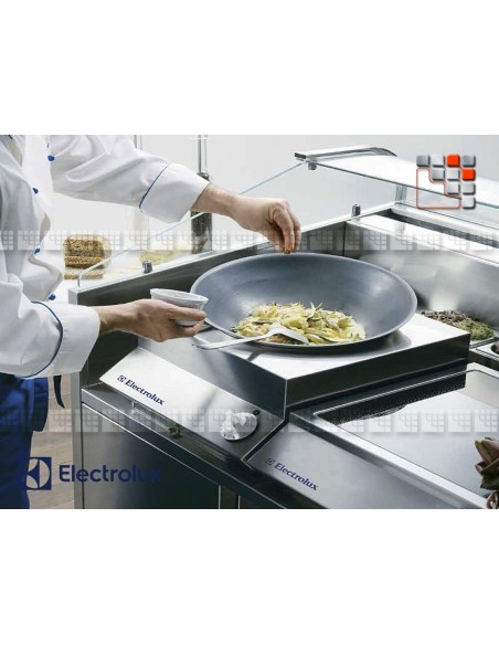 MOBILE KITCHEN REFRIGEREE HOOD INTEGRATED 130 E55-C2C351082 ELECTROLUX PROFESSSIONNEL SAS Mobile Kitchen, Refrigerated